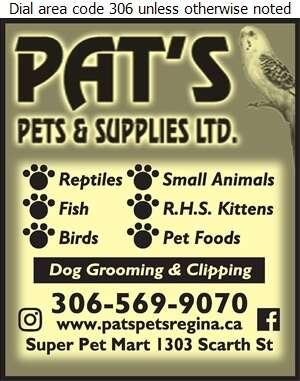 Pat's Pets & Supplies Ltd - Pet Shops Digital Ad