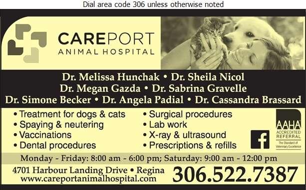Careport Animal Hospital - Veterinarians Digital Ad