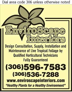 EnviroScape Interiors - Plants Indoor Care & Maintenance Digital Ad
