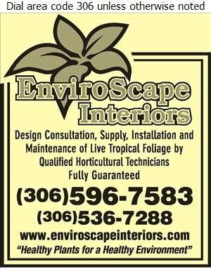 EnviroScape Interiors - Plants Indoor Care & Maintenance Digital Ad