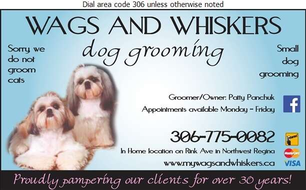 Wags And Whiskers - Pet Washing & Grooming Digital Ad