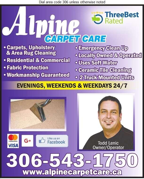 Alpine Carpet Care - Carpet & Rug Cleaners Digital Ad