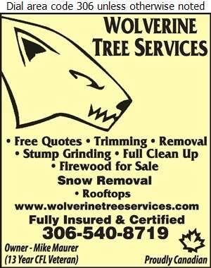 Wolverine Tree Services - Tree Service & Stump Removal Digital Ad