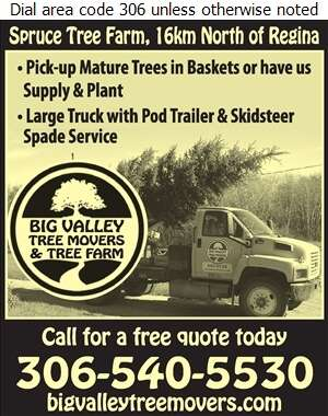 Big Valley Tree Movers & Tree Farm - Tree Service & Stump Removal Digital Ad