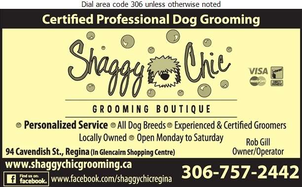Shaggy Chic Grooming Boutique - Pet Washing & Grooming Digital Ad