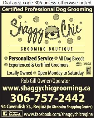 Shaggy Chic Grooming Boutique - Dog Grooming & Clipping Digital Ad