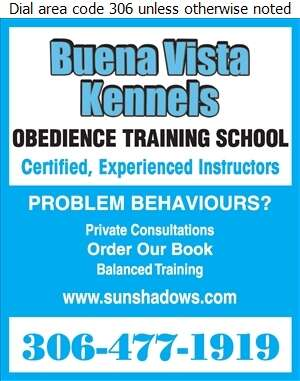 Buena Vista Kennels (1979) Inc (1570 Hill Street S, S on Clarence Past Willows) - Dog Training Digital Ad