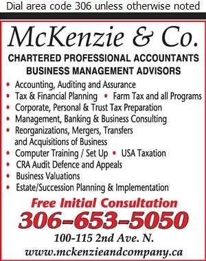 McKenzie & Co - Accountants Chartered Professional Digital Ad