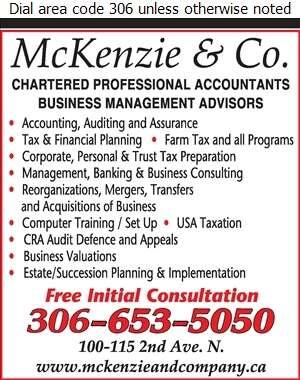 McKenzie & Co - Accountants Chartered Professional Digital Ad