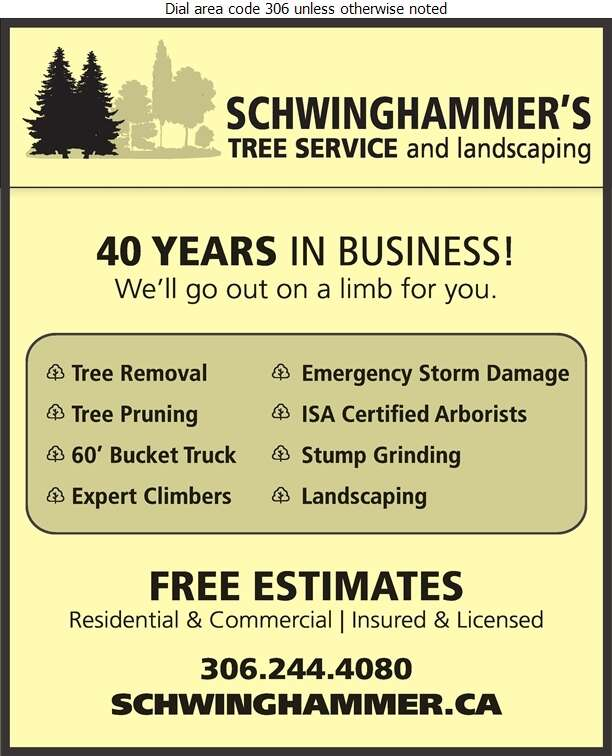 Schwinghammer's Tree Service - Tree Service & Stump Removal Digital Ad
