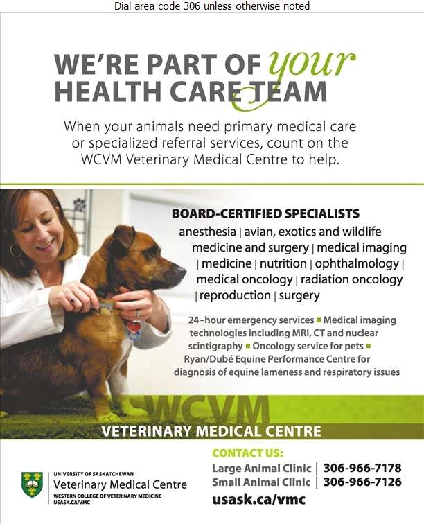 Veterinary Medical Centre (VETERINARY MEDICAL CENTRE DIRECTOR) - Veterinarians Digital Ad