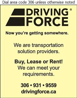 DRIVING FORCE Vehicle Rentals Sales & Leasing - Auto Dealers Used Cars Digital Ad