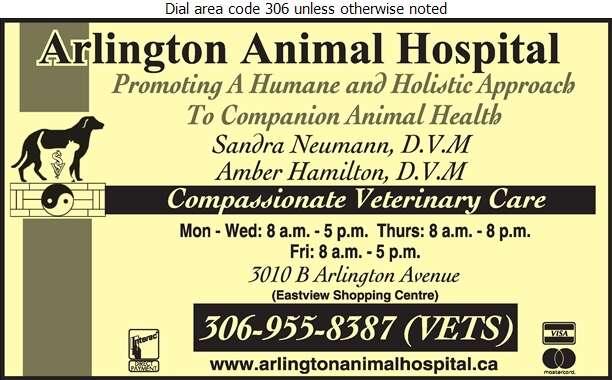 Arlington Animal Hospital - Veterinarians Digital Ad