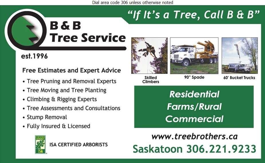 B & B Tree Service - Tree Service & Stump Removal Digital Ad