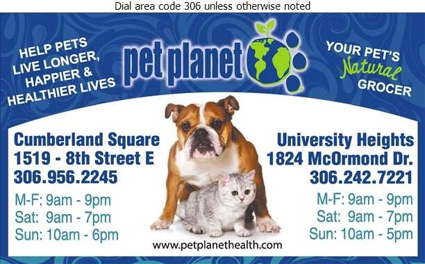 Pet Planet - Pet Supplies & Foods Retail Digital Ad