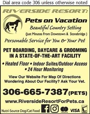 Riverside Resort: Pets On Vacation - Kennels Digital Ad