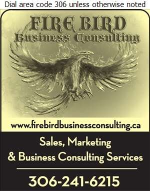 Firebird Business Consulting Ltd - Business Consultants Digital Ad