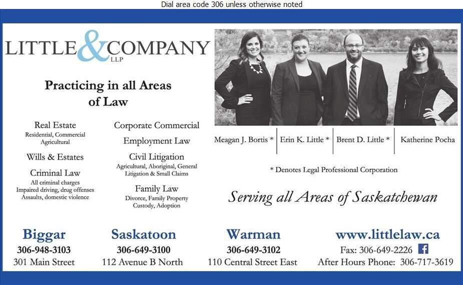 Little & Company LLP - Lawyers Digital Ad