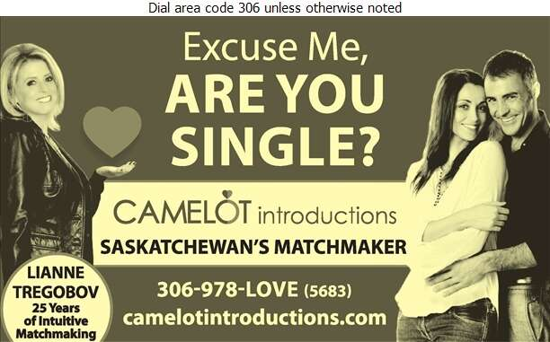 Camelot Introductions - Dating Service Bureaus Digital Ad