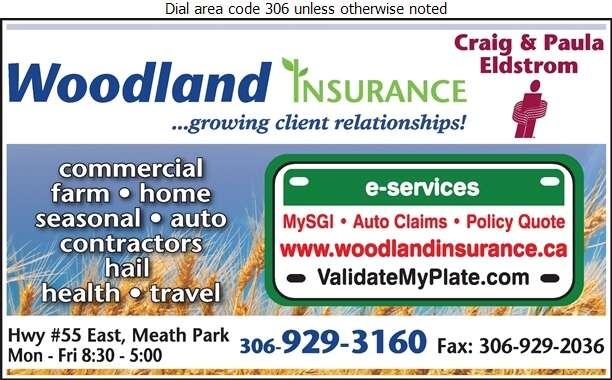Woodland Insurance Inc - Insurance Digital Ad