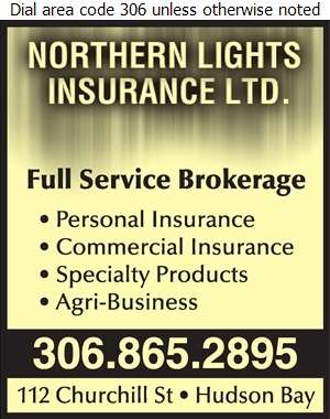 Northern Lights Insurance Ltd - Insurance Digital Ad