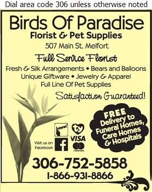 Birds Of Paradise Florist & Pet Supplies - Florists Retail Digital Ad