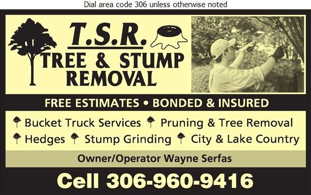 TSR (Tree & Stump Removal) - Tree Service & Stump Removal Digital Ad