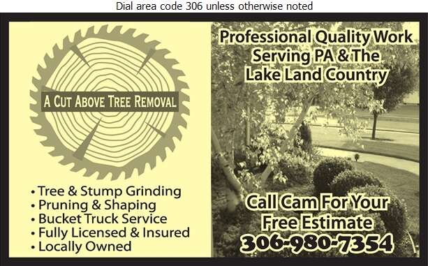 A Cut Above Tree Removal - Tree Service & Stump Removal Digital Ad