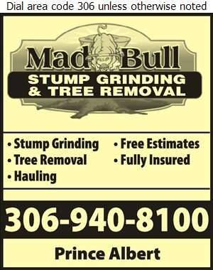 Mad Bull Stump Grinding & Tree Removal - Tree Service & Stump Removal Digital Ad