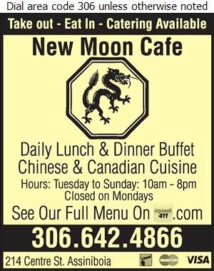 New Moon Cafe - Chinese Foods Digital Ad