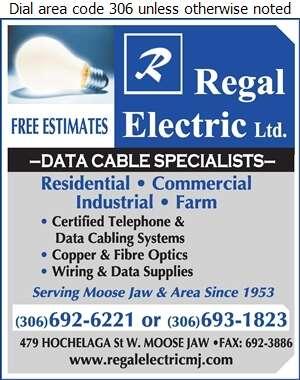 Regal Electric Ltd - Data Communication Service Digital Ad