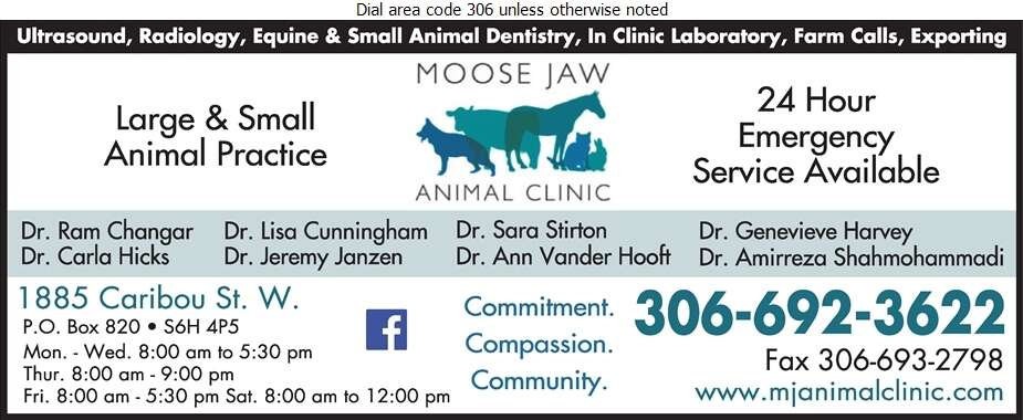 Moose Jaw Animal Clinic - Veterinarians Digital Ad