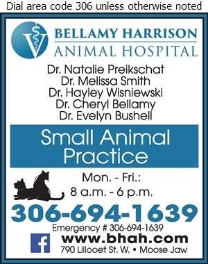Bellamy Harrison Animal Hospital - Veterinarians Digital Ad