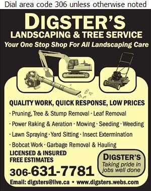 Digsters Landscaping - Tree Service & Stump Removal Digital Ad
