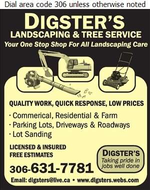 Digsters Landscaping - Snow Removal Service Digital Ad