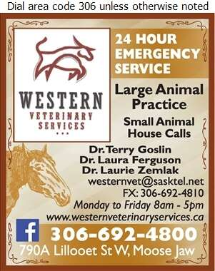 Western Veterinary Services - Veterinarians Digital Ad