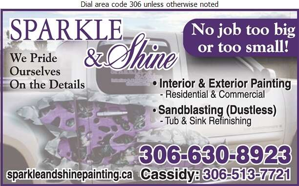 Sparkle & Shine Painting - Painting Contractors Digital Ad