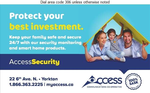 Access Communications - Security Systems Digital Ad