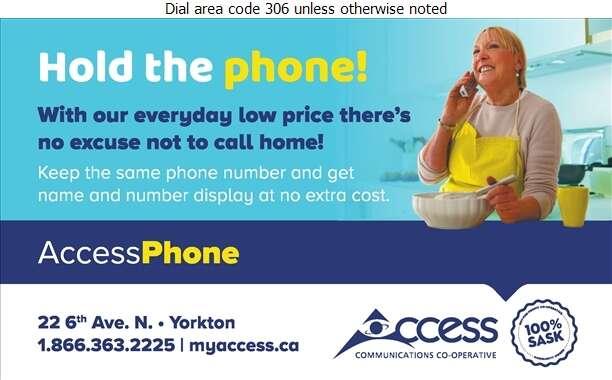 Access Communications - Telephone Companies Digital Ad