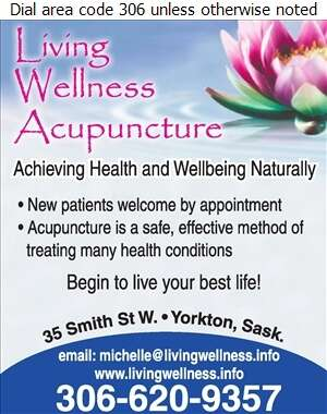 Living Wellness Acupuncture - Acupuncture Digital Ad
