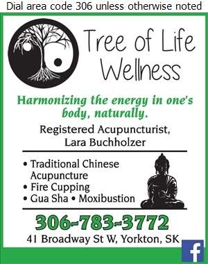 Tree Of Life Wellness - Acupuncture Digital Ad