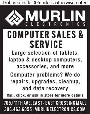 Murlin Electronics - Computers - Repairs & Maintenance Digital Ad