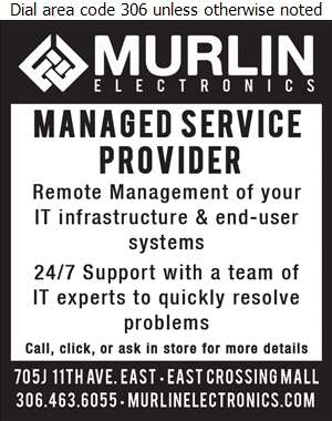 Murlin Electronics - Hosting - Managed Services, Infrastructure & Cloud Digital Ad