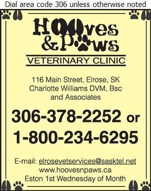 Hooves & Paws Veterinary Clinic (Elrose Veterinary Services) - Veterinarians Digital Ad