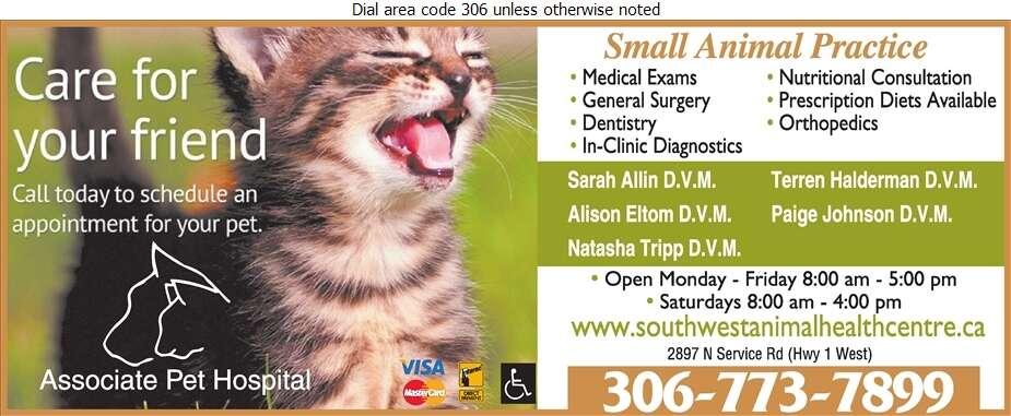 Associate Pet Hospital - Veterinarians Digital Ad