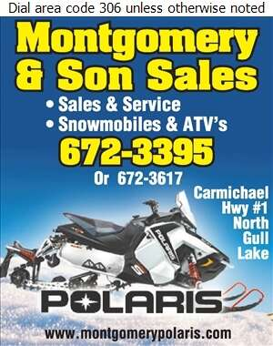 Montgomery & Son Sales - Snowmobiles Digital Ad