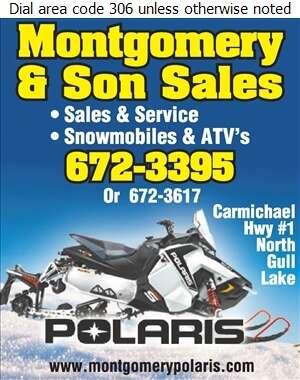 Montgomery & Son Sales - Snowmobiles Digital Ad