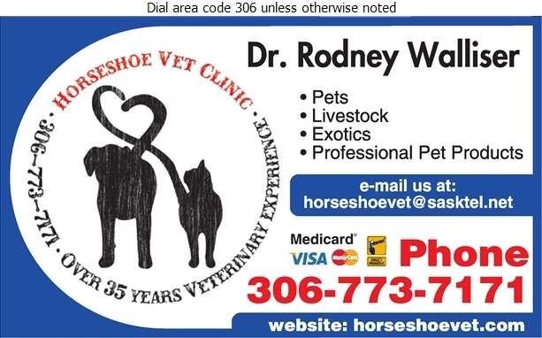 Horseshoe Veterinary Clinic - Veterinarians Digital Ad