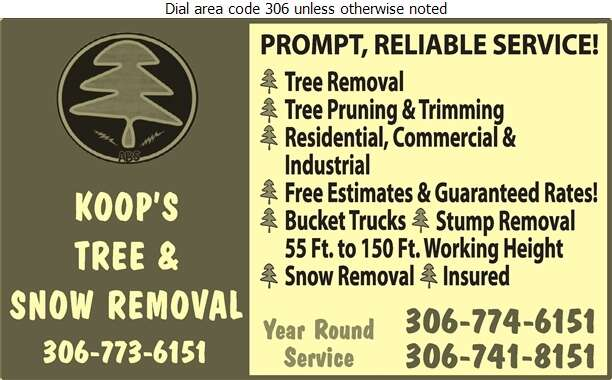 Koop's Tree & Snow Removal - Tree Service & Stump Removal Digital Ad
