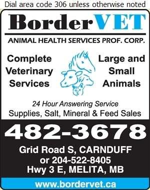BorderVET Animal Health Services Prof Corp - Veterinarians Digital Ad